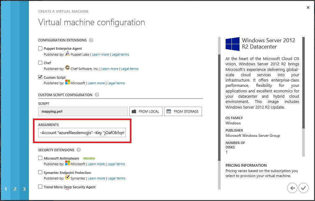 Custom Script configuration with arguments