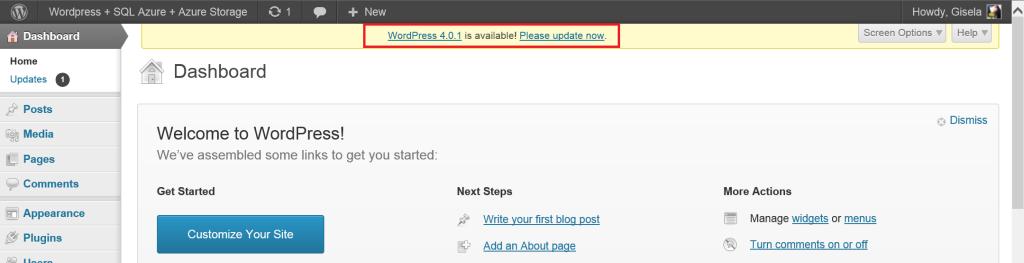 Brandoo Update WordPress