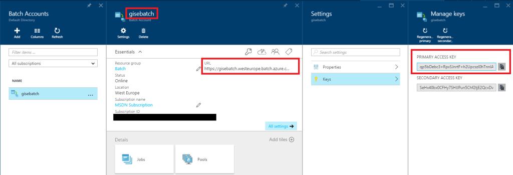 Batch info - Azure portal
